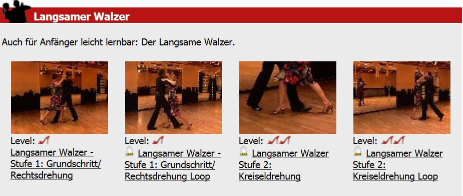Rumba, Walzer, Bollywood:  Tanzen lernen im Internet ?